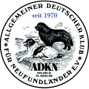 Logo adkn