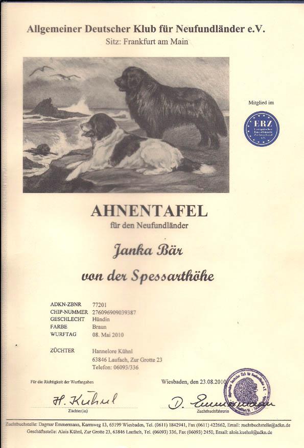Janka Ahnentafel Seite 1