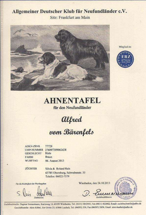 Alfred Ahnentafel Seite1