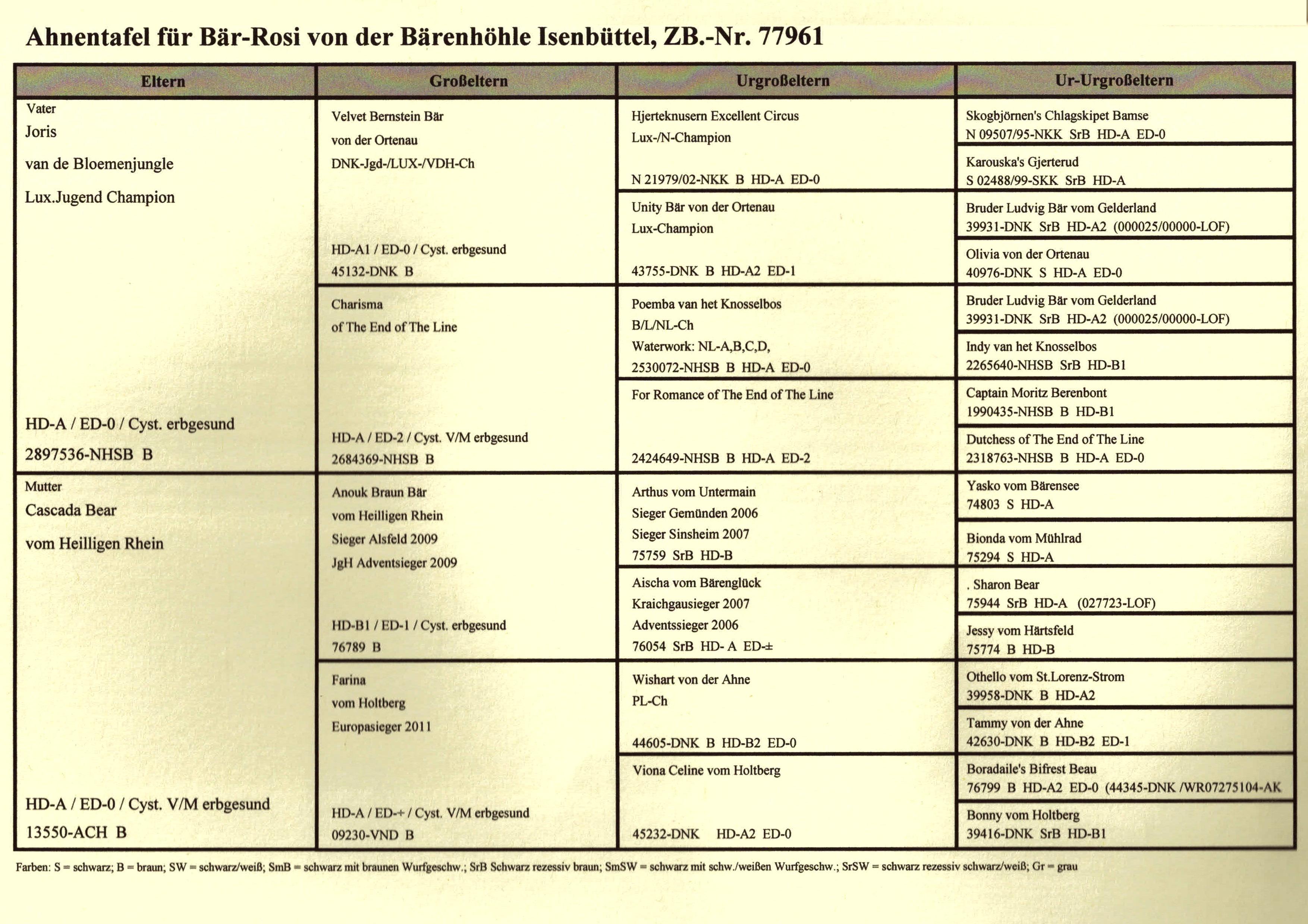 Ahnentafel Bär-Rosi Seite 2