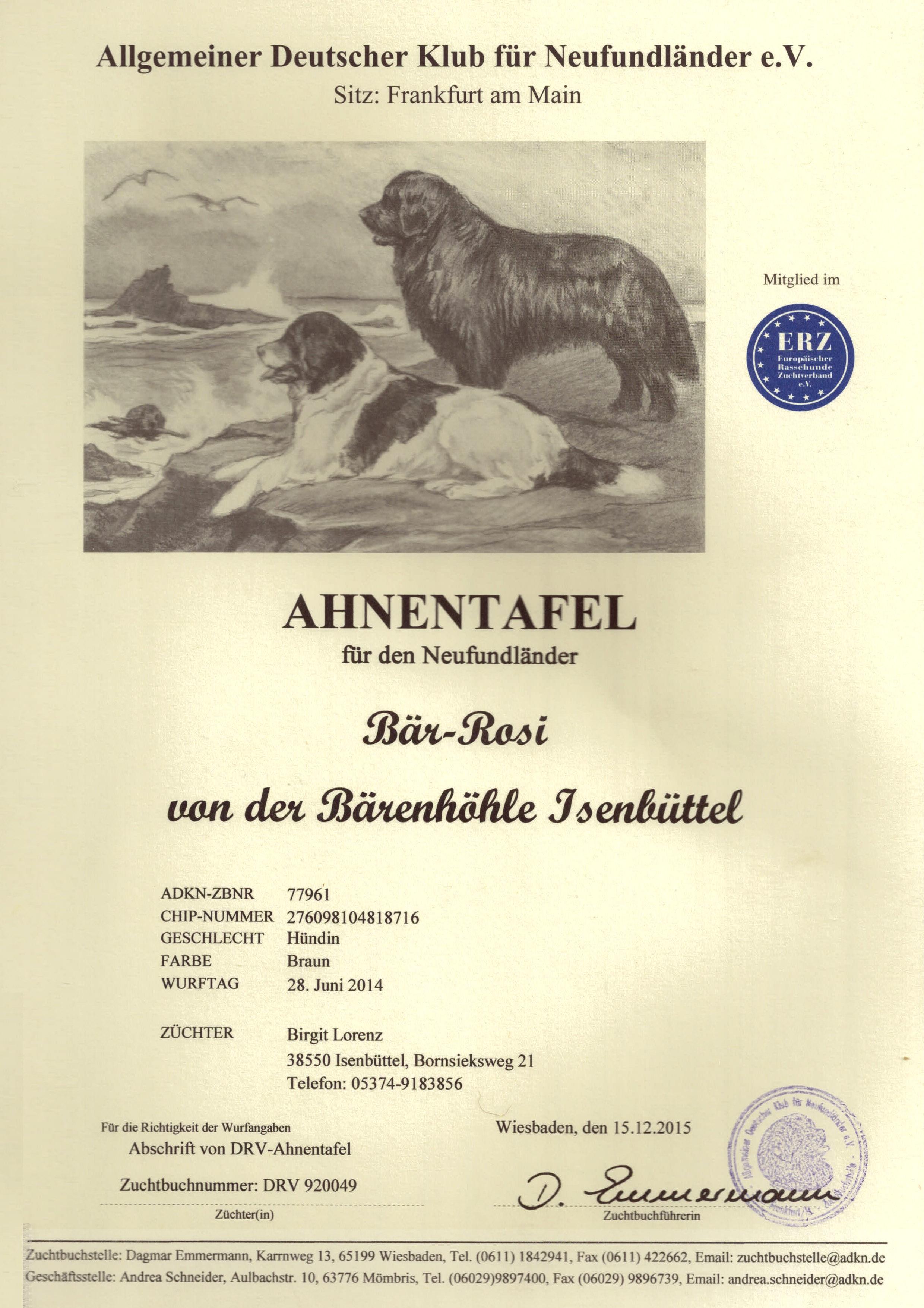 Ahnentafel Bär-Rosi Seite1