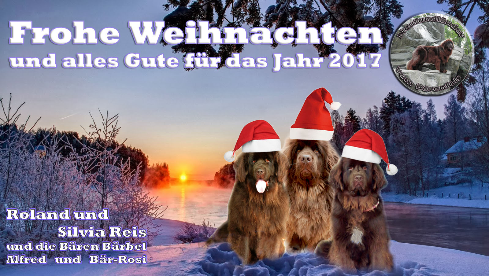Frohe Weihnachten Hsv.Frohe Weihnachten Und Einen Guten Rutschneufundländer Vom Bärenfels